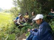 irrigation11